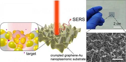 起皱的石墨烯—金纳米颗粒混合结构促进表面