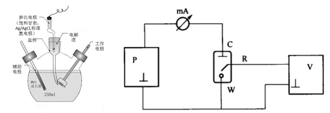 三电极体系结构图及电路图