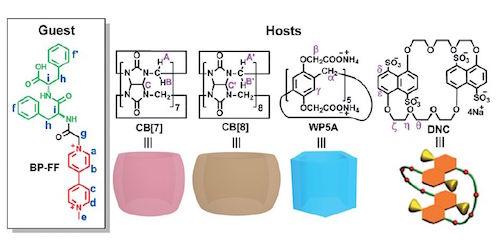 图2 宿主和客体混合物的化学结构及质子分配